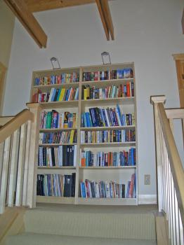 New bookcases---now full