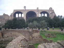 The Roman Forum, once the most politically important seat in the world.  Now full of archeologists.